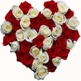 Srdce z bílých a rudých růží